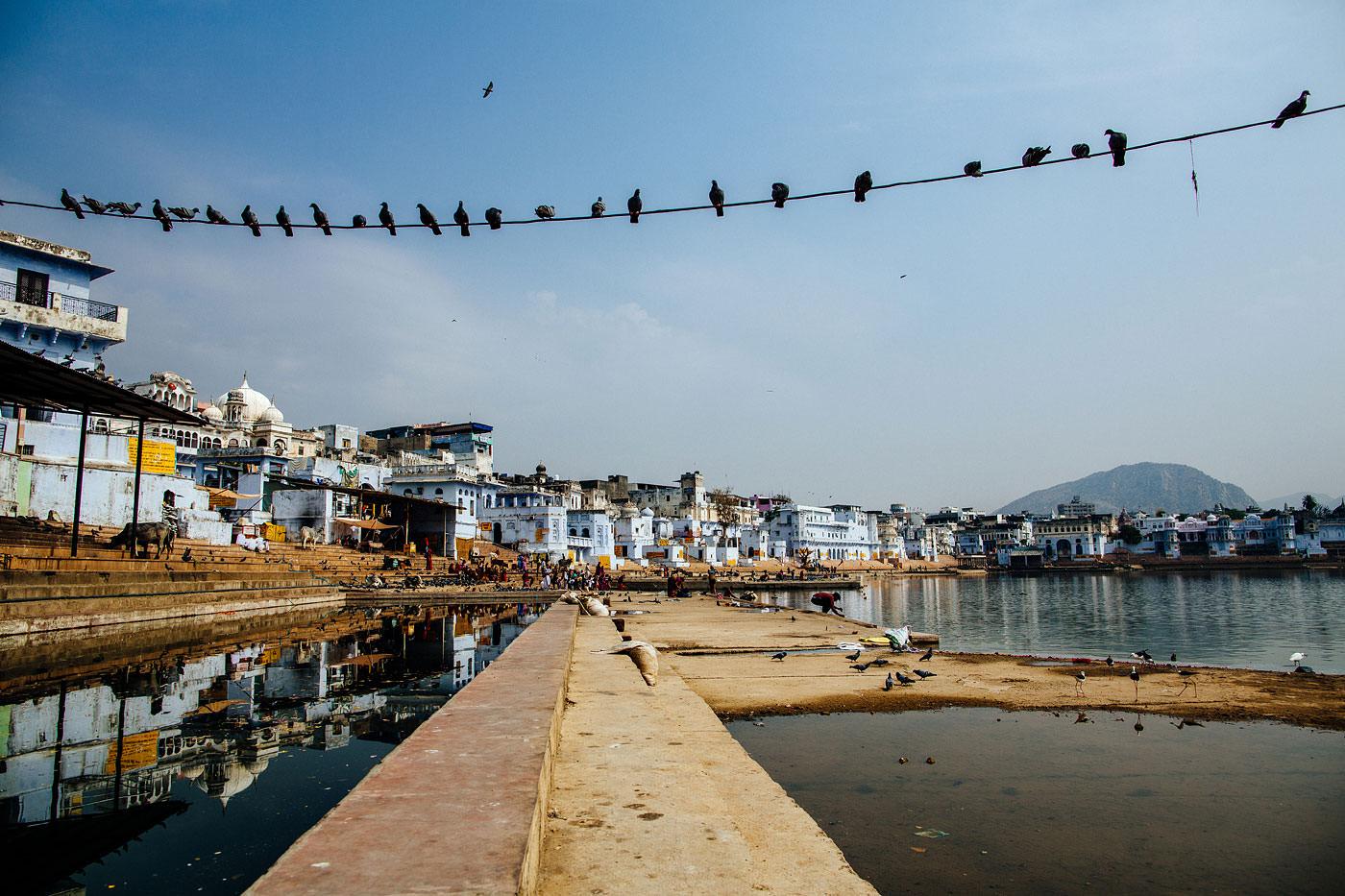 Pushkar, India // 2014